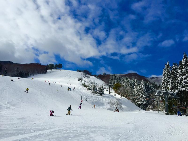 Kannabe Ski Resorts