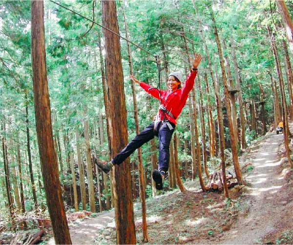 Forest Adventure ropes course or hiking