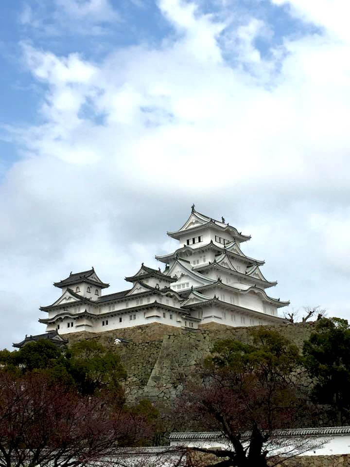 Sightseeing in Himeji and Osaka