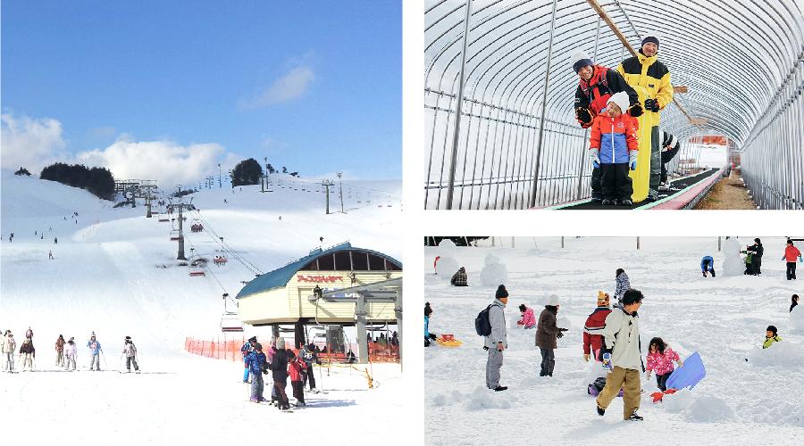 Enjoy winter sports in Kannabe