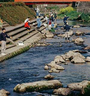 river fishing kannabe
