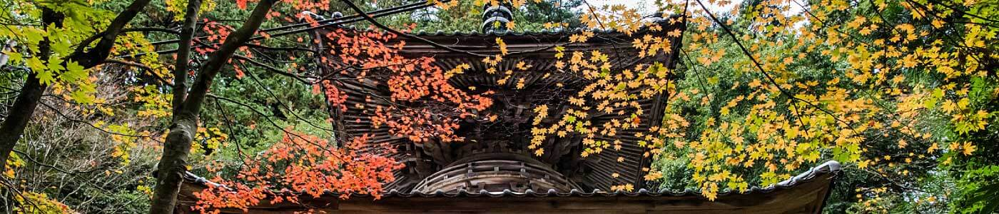 Fall leaves in Kinosaki Onsen onsenji
