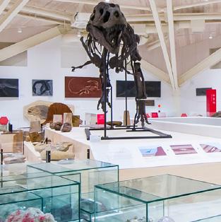 Genbudo Museum & Park
