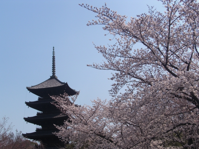 Kyoto Sightseeing