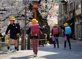 Japanese Elementary school children playing in the sakura blossoms as they walk to school along the cherry blossom lined riverside of Kiyomachi street.